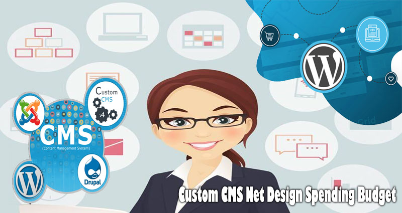 Custom CMS Net Design Spending Budget
